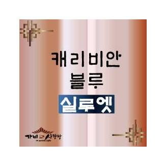 캐리비안블루 - 실루엣 1kg / 500g